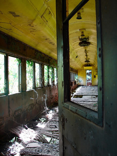nature reclaims abandoned train